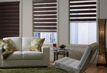 Рулонные шторы день ночь в гостиной